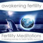 Fertility Meditations Vol 1 - Silver