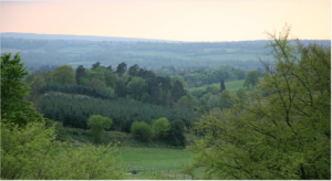 Fertility Retreat Venue, Surrey - View